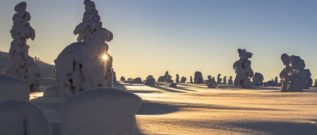Schnee in Lappland